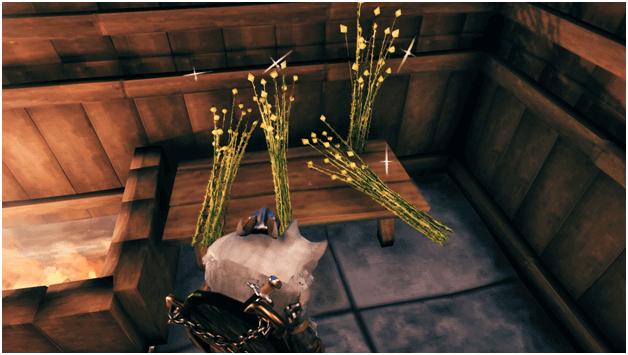valheim Flax